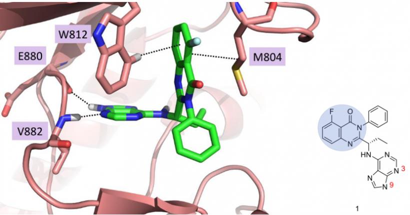 OpenEye案例 | 和记黄埔强效、高选择性的PI3Kγ/δ双重抑制剂