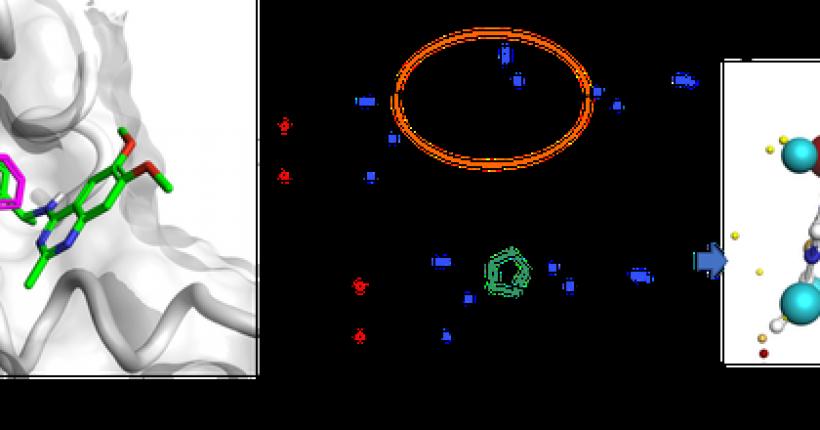 SPARK案例 | 拜尔发现通过干扰RAS-SOS1相互作用能够阻断RAS激活的SOS1抑制剂