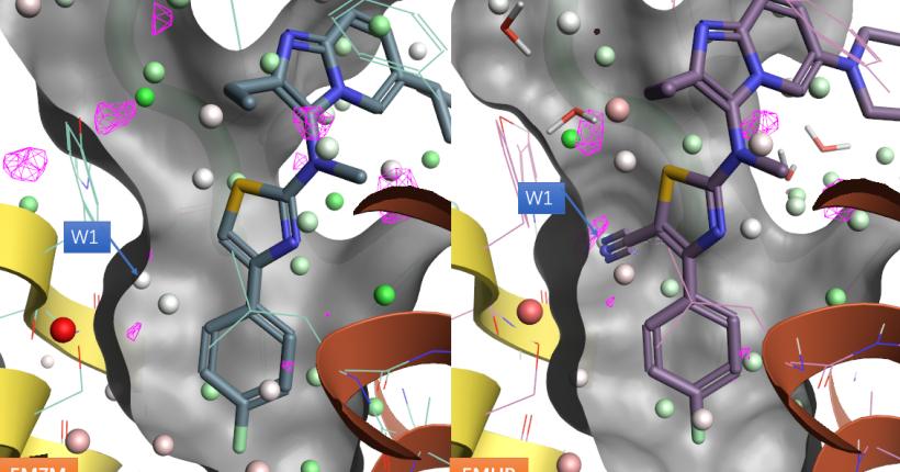 借助重要的水加速基于结构的ATX抑制剂先导化合物优化