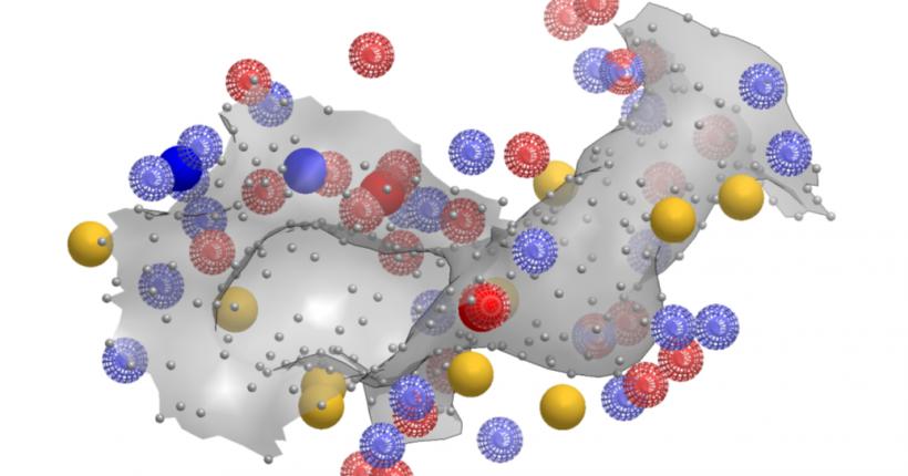 SiteHopper——独特的蛋白结合为位点比较工具