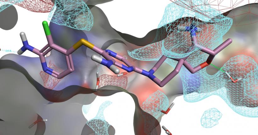 SHP2别构抑制剂TNO155发现过程回顾与基于结构的SAR分析