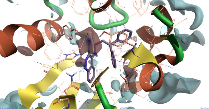 综合利用基于结构与基于配体的方法理解SD抑制剂的SAR