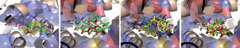 虚拟筛选-分子对接还是药效团?-墨灵格的博客