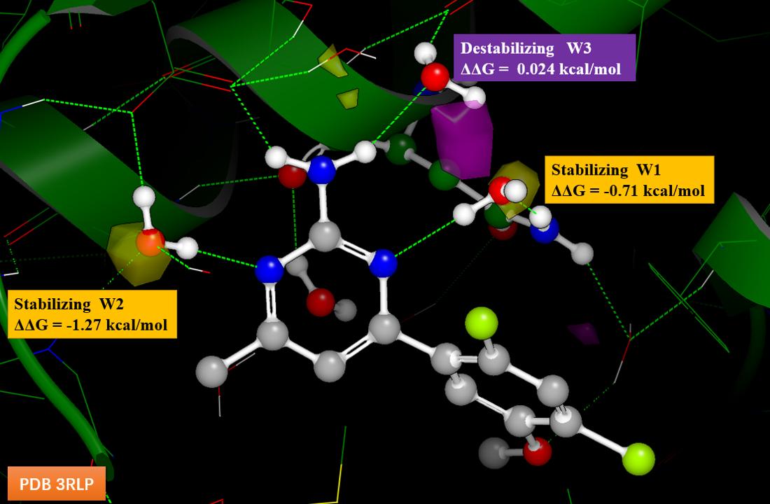 图7. 化合物1-Hsp90复合物结构的稳定化网格计算