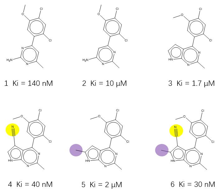 图6. Kung等人靶向结晶水的Hsp90抑制剂算例化合物。