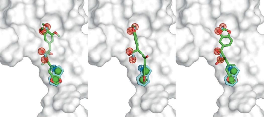 ROCS案例 | RUNX1/ETO四聚体PPI抑制剂的发现-墨灵格的博客
