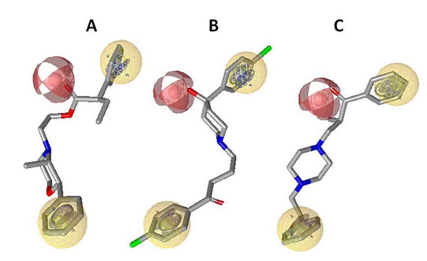 LigandScout案例 | 药效团建模、虚拟筛选及体外测试揭示氟哌啶醇、依普拉酮及芬布酯是神经激肽受体的配体-墨灵格的博客