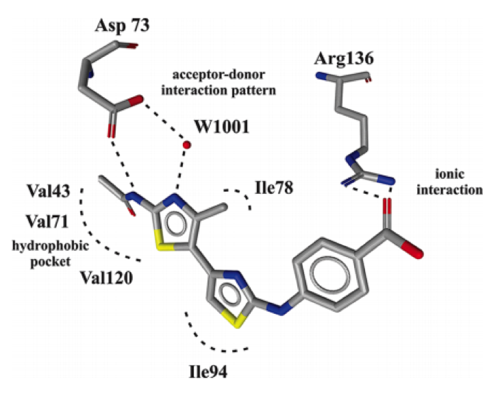 LigandScout案例 | 基于结构的虚拟筛选发现全新DNA促旋酶抑制剂-墨灵格的博客