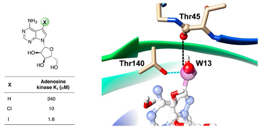 用卤键替换水分子进行先导化合物结构优化-墨灵格的博客