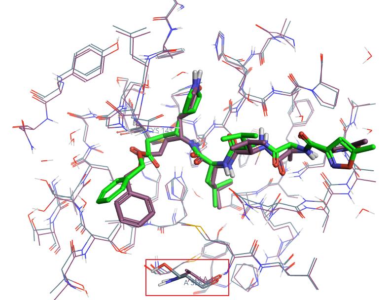 2019-nCoV 3CL水解酶与抑制剂的复合物结构-墨灵格的博客