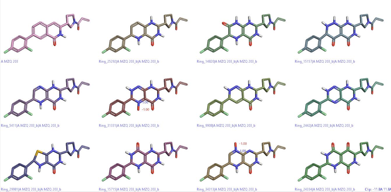 片段虚拟筛选发现新的KRAS<sup>G12C</sup>共价抑制剂-墨灵格的博客