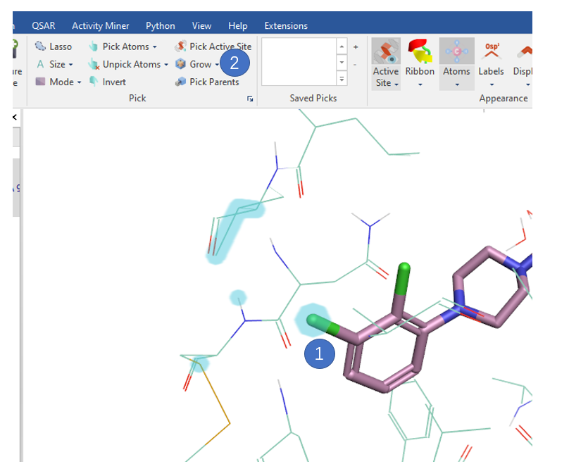 在基于结构的设计中用Flare Viewer来提高视觉分析的效率-墨灵格的博客
