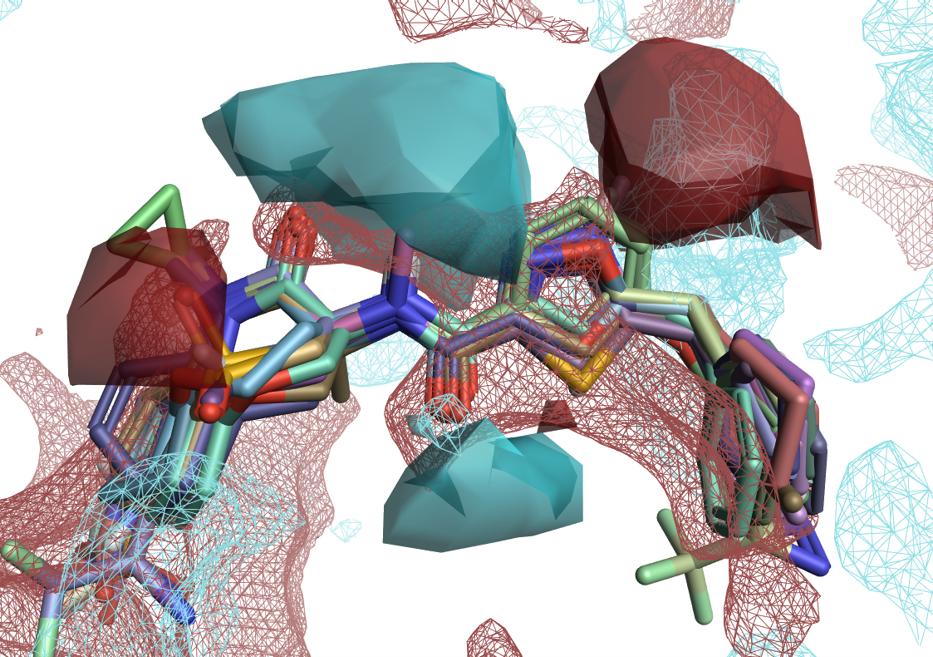图4. 活性悬崖与蛋白相互作用势