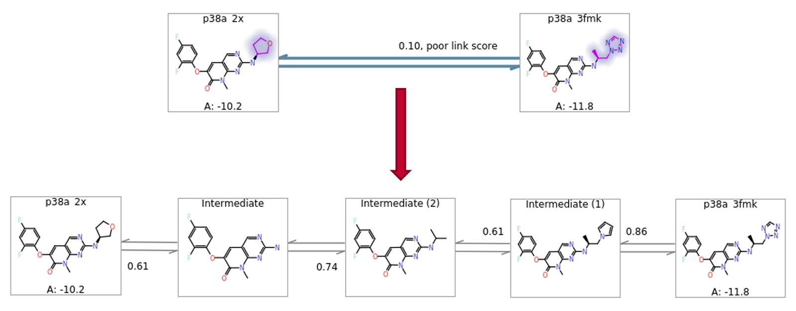 图9. 自动添加中间体结构以使得对大结构变化的ΔΔG评估更加健壮。