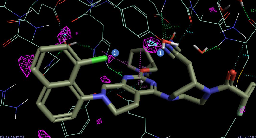 KRAS<sup>G12C</sup>共价抑制剂MTRX849先导化合物优化过程中的水分子替换-墨灵格的博客
