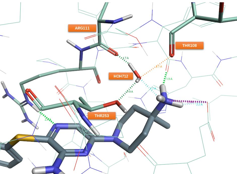 SHP2别构抑制剂TNO155发现过程回顾与基于结构的SAR分析-墨灵格的博客